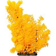 Poppy Pet - Bushy Ambuila Aquarium Plant - Orange - 16 Inch