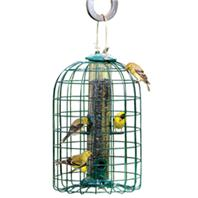 Audubon/Woodlink - Squirrel Resistant Caged Tube Feeder - Clear/Green - 1.25 Lb Capacity