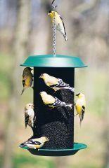 Audubon/Woodlink - Magnum Thistle Bird Feeder - Green - 5 Lb Capacity