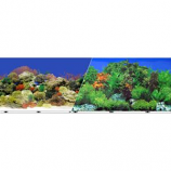 BLUE RIBBON PET PRODUCTS - BACKGROUND DOUBLE-SIDED CORAL REEF/FRESHWATER--12IN X 50FT