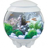 Oase - Aquatics - Biorb Halo 15 Mcr Aquarium - White - 4 Gal/15 Liter