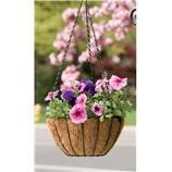 Panacea Products - Growers Basket - Black - 14 In