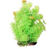 Poppy Pet - Bushy Ambuila Aquarium Plant - Lime Green - 12  Inch