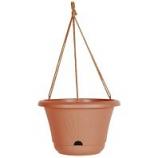 Bloem - Lucca Hanging Basket - 13 Inch
