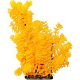 Poppy Pet - Bushy Ambuila Aquarium Plant - Orange - 16 Inch