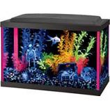 Aqueon Products - Glass - Neoglow Aquarium Kit Rectangle - Pink - 5.5 Gallon