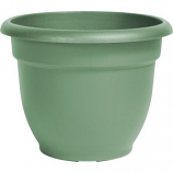 Bloem - Ariana Planter - Living Green - 8 Inch