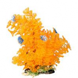 Poppy Pet - Bushy Ambuila Aquarium Plant - Orange - 12  Inch
