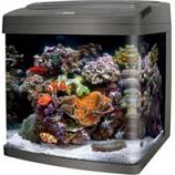 Aqueon Products - Glass - Coralife Bio Cube Led Aquarium - Black - 16 Gallon