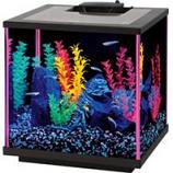 Aqueon Products - Glass - Aqueon Neoglow Aquarium Kit Cube - Pink - 7.5 Gallon