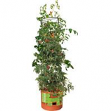 Hydrofarm Products - Tomato Barrel With Tower -