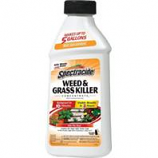 Spectracide - Weed And Grass Concentrate - 16Oz