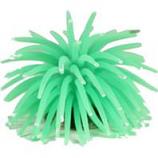 Poppy Pet - Sea Anemone - Green - Large