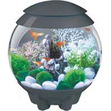Oase - Aquatics - Biorb Halo 15 Mcr Aquarium -