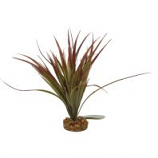 Blue Ribbon Pet Products - Color Burst Florals Mini Sword Plant - Plum - Mini