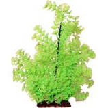 Poppy Pet - Bushy Ambuila Aquarium Plant - Lime Green - 16 Inch