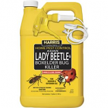 P.F. Harris Mfg Co Llc - Asian Lady Beetle Box Elder Bug Killer - 128 Oz