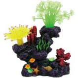 Poppy Pet - Coral Reef Formation - Multi - 6X4X7