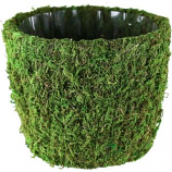 Syndicate Sales - Planter Round Agatha - Green - 7 In