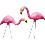 Bloem - Pink Flamingo - Large/2 Pack