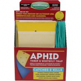 Green Earth Products - Aphid And Whitefly Trap Counter Display - 100 Pk