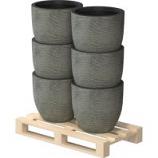 Hcc Retail - Aspen Planter 1/4 Pallet - Assorted