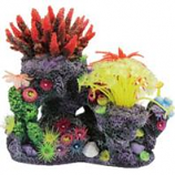 Poppy Pet - Coral Reef Formation - Multi - 8X6X8